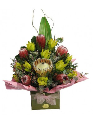 Protea Queen- ** delivery included up to a15km radius